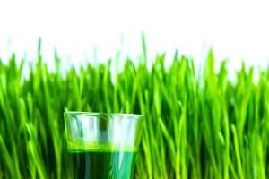 Ce stim despre sucul verde de Grau