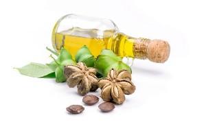 Beneficiile uleiului Inca Inchi