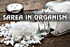 Iata cat de benefica este sarea pentru organismul tau...