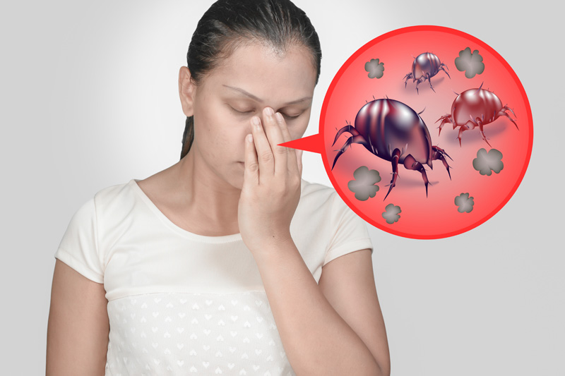 Alergiile la praf. Acarienii: Simptome, tratament si prevenire