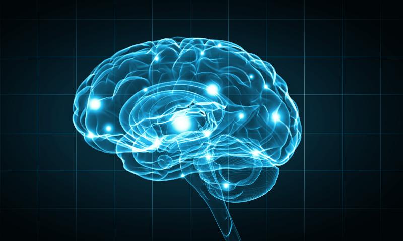 Ce procent din creierul nostru folosim in viata de zi de zi?