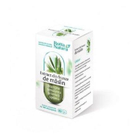 Extract din Frunze de Maslin 30cps Rotta