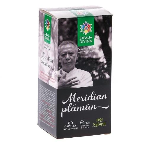 Meridian Plaman 100ml Steaua Divina