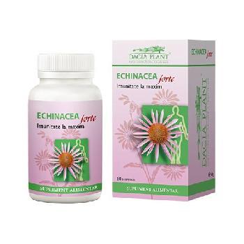 Echinacea Forte 60cps Dacia Plant