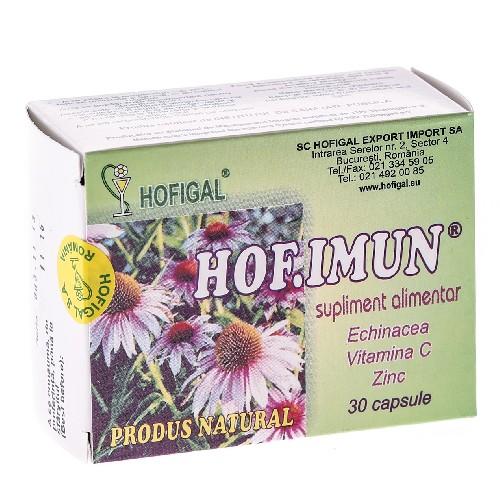 HOF.IMUN Echinacea+Vit C+Zinc 40cps Hofigal