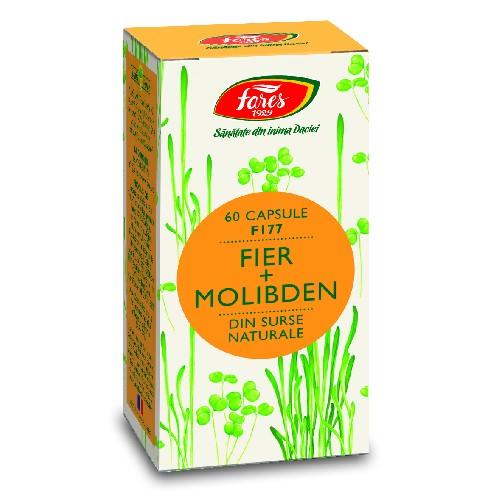 Fier + Molibden 60cps Fares