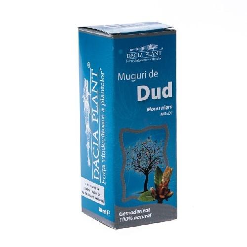 Gemoderivat Muguri de Dud 50ml  Dacia Plant
