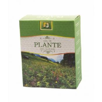 Ceai Angelica 50g Stefmar