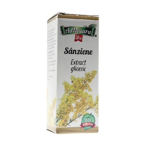 Extract Gliceric Sanziene 50ml Adnatura