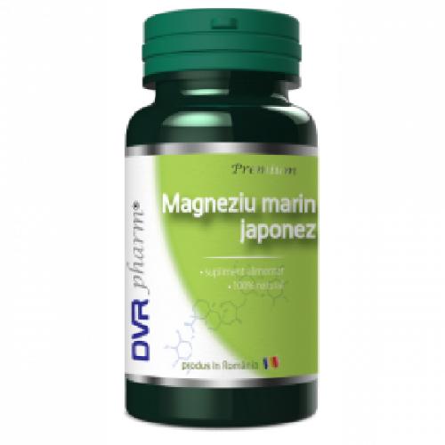 Dvr Magneziu Marin Japonez 60cps