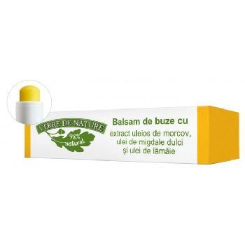 Balsam Buze Morcovi 4gr  Verre de Nature