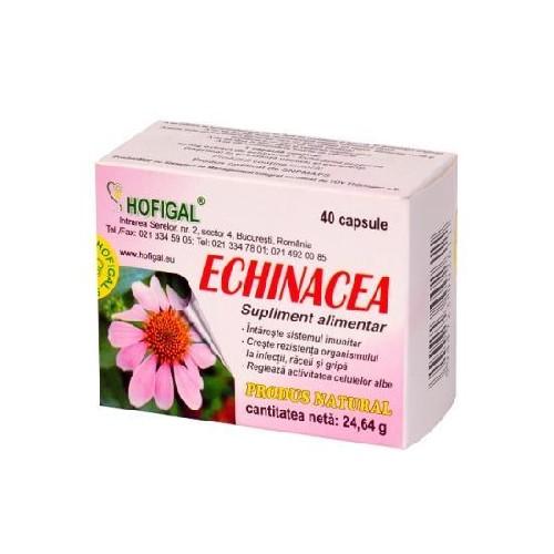 Echinacea 40cps Hofigal