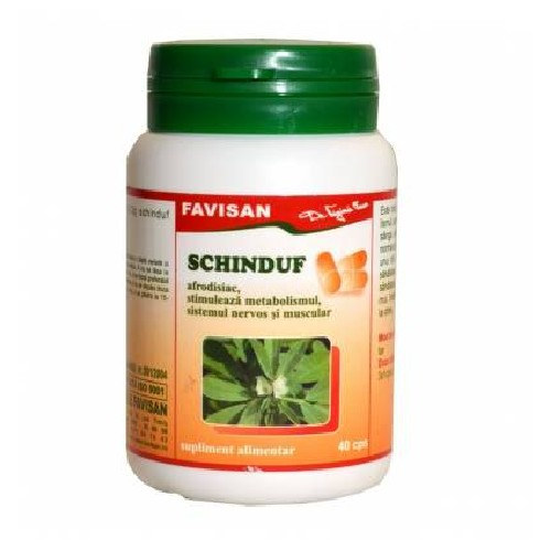 Schinduf 40cps Favisan